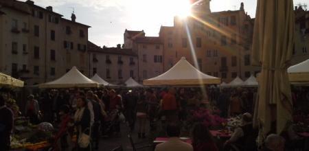 Fiera S. Zita Lucca